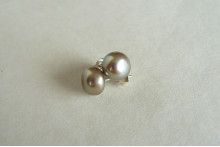 Champagne Pearl Stud Earrings - Medium